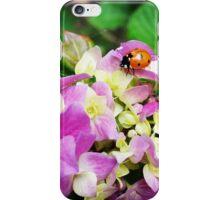 Ladybug on Hydrangea iPhone Case/Skin