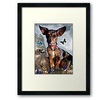The Butterflies And The Little Bat Eared Puppy Framed Print