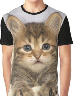 Cute Siberian kitten lying down Graphic T-Shirt