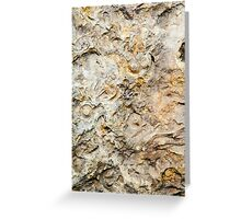 Fossil Rock Greeting Card