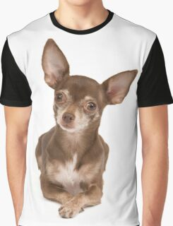 Cute Chihuahua sitting up Graphic T-Shirt