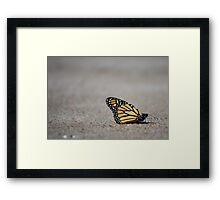 Journey Ahead Framed Print
