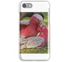 Galahs in Love iPhone Case/Skin