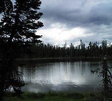 Lake Manzanita  by Jamie Peterson