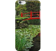 Comfort For The Soul - The Bridge of Life iPhone Case/Skin
