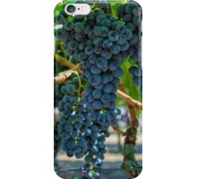 Grapes 2 iPhone Case/Skin