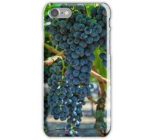 Grapes 2 iPhone Case/Skin
