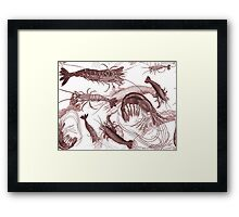 Brown Vintage Shrimp Engravings Framed Print