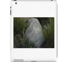 Stockman Bank iPad Case/Skin