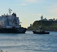 ANNY PETRAKIS - BULK CARRIER by Phil Woodman