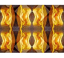 yellow tulip reflection/abstraction number 2. VividScene Photographic Print