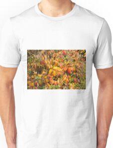 Autumn's Paint Brush Unisex T-Shirt