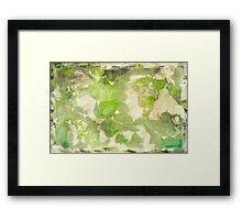 Vintage Ivy Framed Print