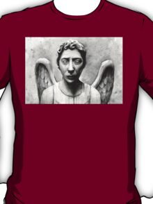 Weeping Angel - Don't Blink! T-Shirt
