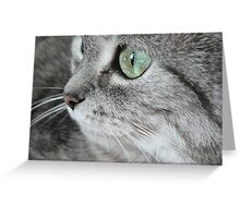 Cat I. Greeting Card