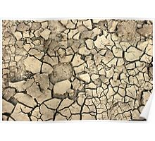 Drought Stricken Earth - Phone Cases, Pillows and More Poster