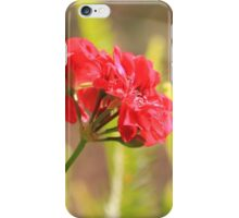 She never recognised her own beauty iPhone Case/Skin