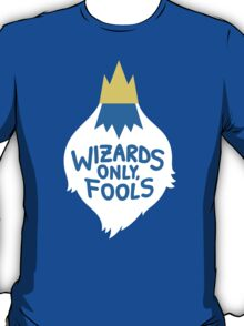 Wizards Only, Fools T-Shirt
