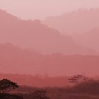 Hazy Tropical Sunset by hummingbirds
