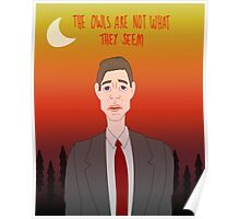 Twin Peaks - The Owls Are Not What They Seem Poster