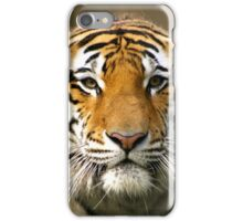 Amur Tiger iPhone Case/Skin