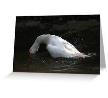 Diving goose Greeting Card