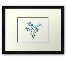 blue forget me not 2 Framed Print