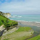 Train Journey Picton to Christchurch NZ by Alison Murphy