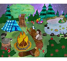 Woodland Critters Under the Stars Photographic Print