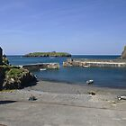 The Harbour at Mullion Cove by Steve plowman