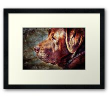 DOG Framed Print