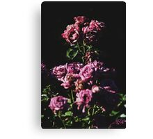 Baroque Flowers Canvas Print