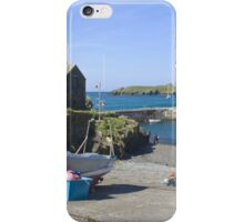 Mullion Cove iPhone Case/Skin