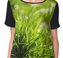 Grass closeup Chiffon Top