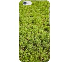 Lucerne field in the spring iPhone Case/Skin