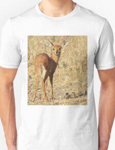 Steenbok - Shy and Elusive Beauty - Cute African Wildlife Unisex T-Shirt