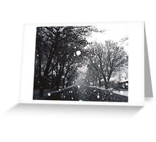 SNOW-DOME VILLAGE - ARROWTOWN New Zealand Greeting Card