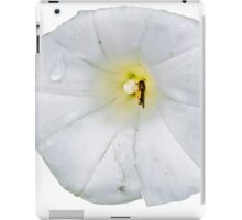 white flower and insect  iPad Case/Skin