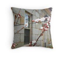 RADIANT FLOWERS - ROSS Tasmania Throw Pillow