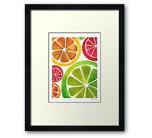 A Burst of Citrus Framed Print