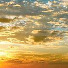 SUNBURST SUNRISE - Queensland, AUSTRALIA by MrSnapHappy