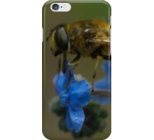 hoverfly on blue flower iPhone Case/Skin