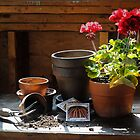 Potting Shed by Debbra Obertanec