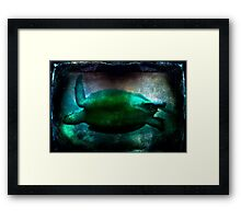 Flying Through the Water Framed Print
