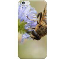 zweefvlieg op blauwe bloem iPhone Case/Skin