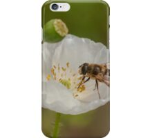 hoverfly on white poppy iPhone Case/Skin