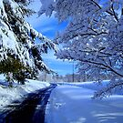 Winter Road - calendar shot    ^ by ctheworld