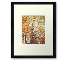 Autumn Inkblot Framed Print