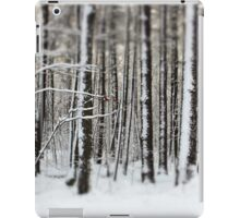 Snowy Woods iPad Case/Skin