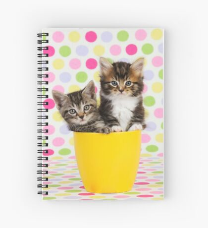 Cute kittens sitting in a cup Spiral Notebook